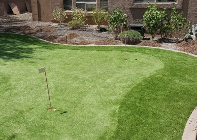 Putting Green and Rough