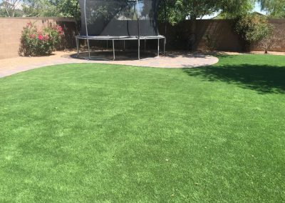 artificia turf and stone pathways