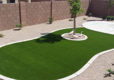 boardered turf and cement patio